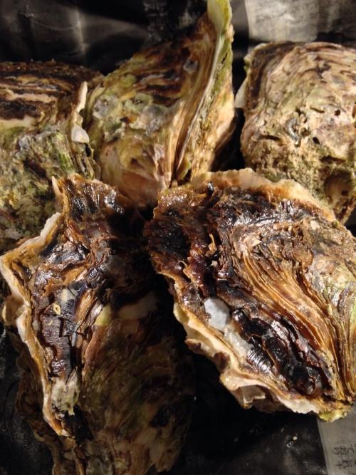 夏の岩牡蠣