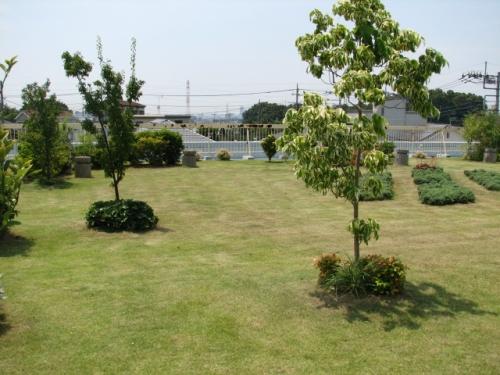 安行四季彩マットの屋上庭園!屋上緑化!