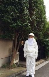 スズメバチ、アシナガバチ駆除もフリーマンにおまかせください!