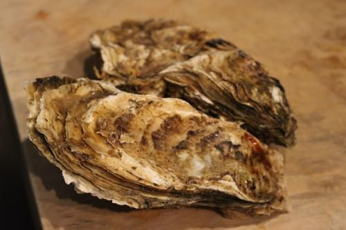 北海道より特選素材!仙鳳趾 (せんぽうし)産 生牡蠣