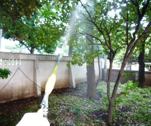 蚊の駆除を実施 デング熱対策