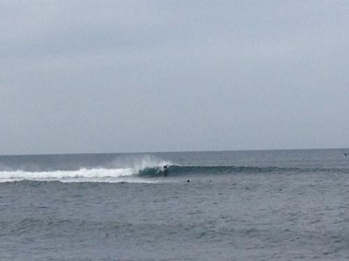 台風17号からの波は1173でした(^。^)