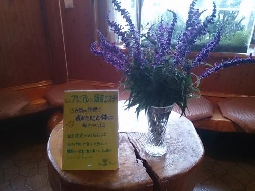 美容室の前に咲いた花をお客様さんに差し上げました。