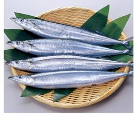 『魚油で生活習慣病予防』