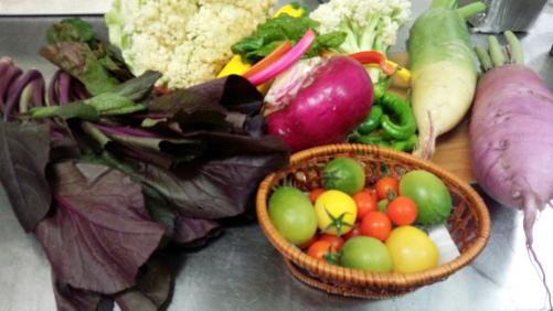 色鮮やかな新鮮野菜入荷!!ふかふかファームさんより